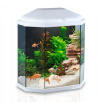 25L Hexagonal Style Glass Aquarium with LED Lights & Filter - White